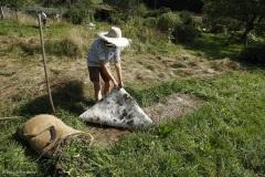 Comment créer une prairie maigre dans son jardin. Une surface de terrain a été recouverte pendant quelques mois d'une bâche qui étouffe la végétation.