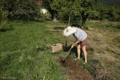 Comment créer une prairie maigre dans son jardin. Sarclage et ratissage du terrain mis à nu.