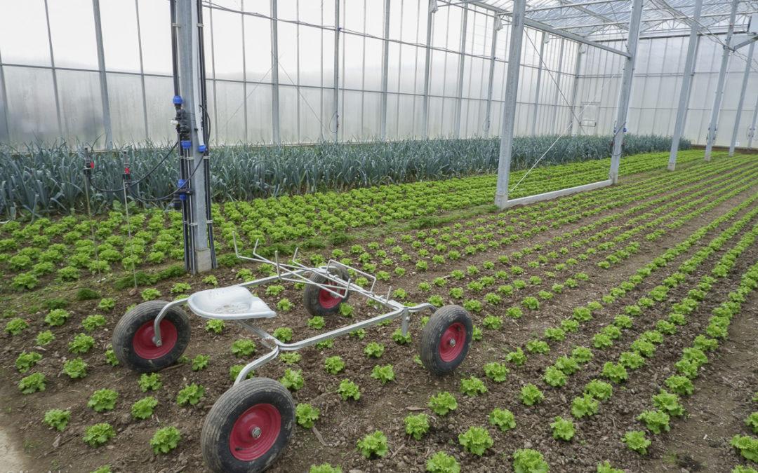 La permaculture se joue aussi dans la cour des grands