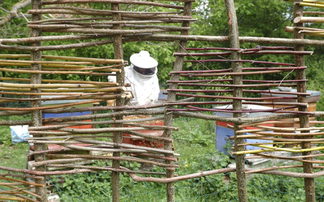 Fenêtres ouvertes sur le rucher