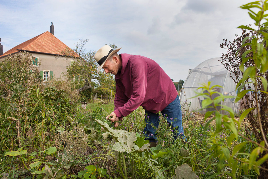 Rencontre avec Patrick Frey, paysan permaculteur