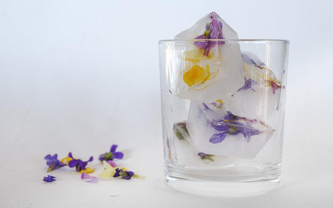 Glaçons fleuris: à votre santé!