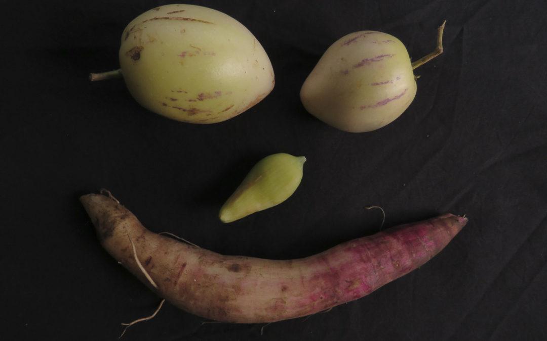 Drôles de légumes!
