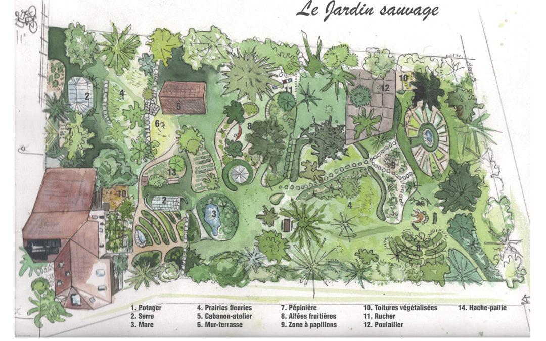 Le jardin sauvage en aquarelle